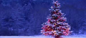 Lettera aperta a Babbo Natale
